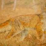 838# R. Perlak, Fox, 2013, oil on canvas, 11 x 17 in (28 x 44 cm)