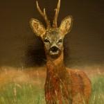 841# R. Perlak, Deer, 2013, oil on canvas, 23 x 16 in (58 x 42 cm)